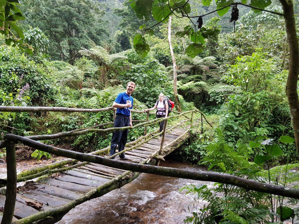 Bwindi hike