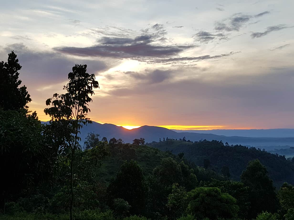 Bwindi Uganda