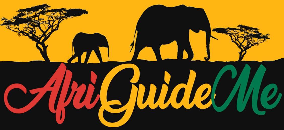 logo AfriGuideMe